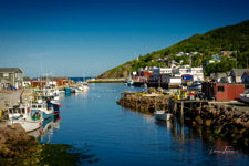 Beautiful Petty Harbour