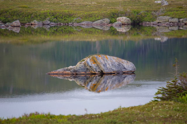 Reflection , rock in a pond