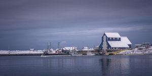 Bonavista Winter Blues