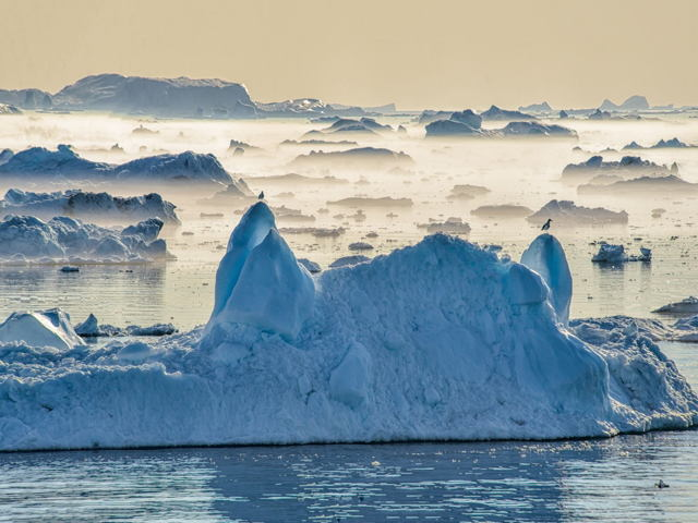 Late Afternoon, Disko Bay, Greenland