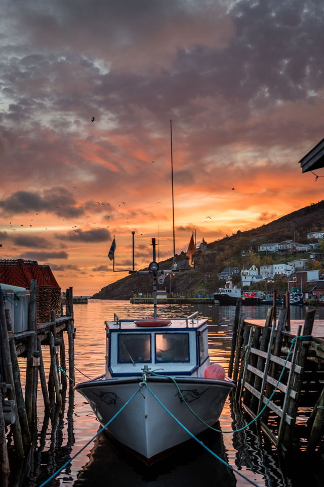 1 ba3 Petty Harbour Sunrise v1