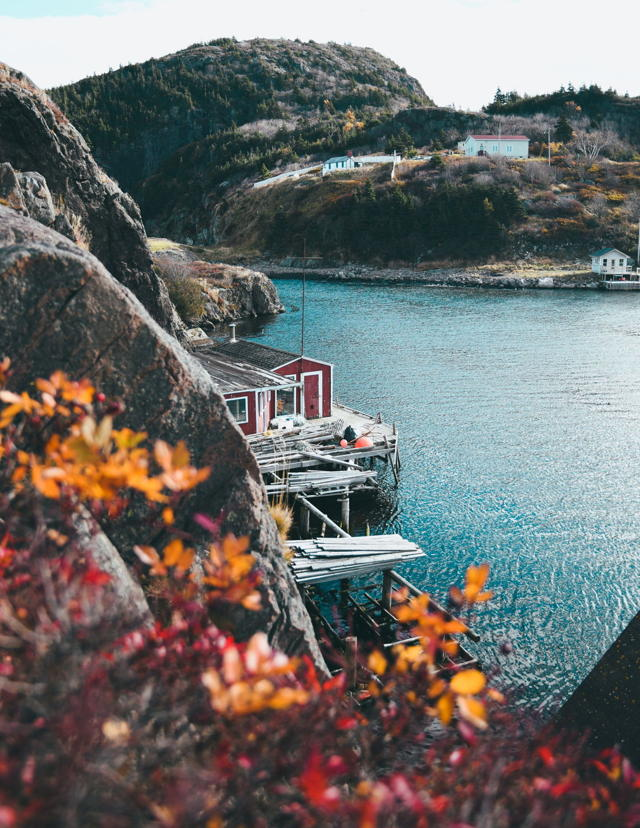 Autumn Glow in Quidi Vidi