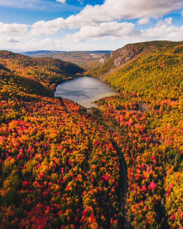 Fall in the Humber Valley