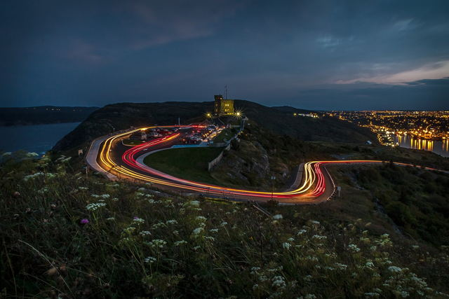 Light Trails and Flowers