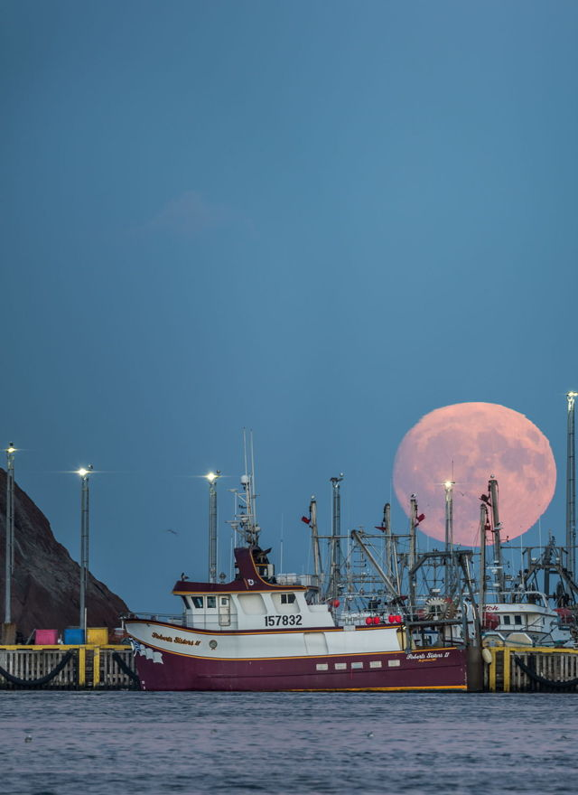 St. John's Hunters Moon