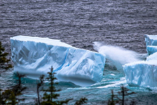 Iceberg Season