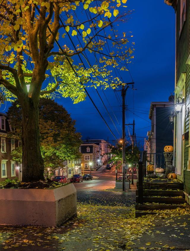 Gower Street Halloween
