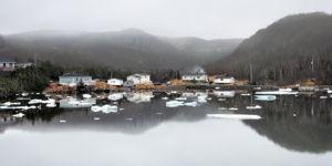 Newfoundland Morning Looks like Ink Painting