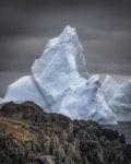 Iceberg Giant