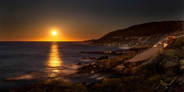 Golden Light - Pouch Cove