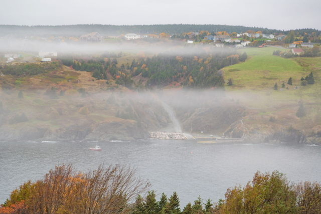 Torbay fog 3