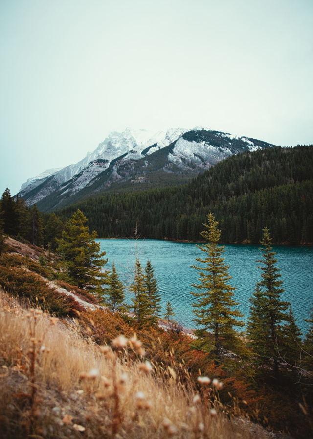 Autumn in Banff
