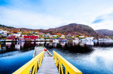 A Walkway To Petty Harbour
