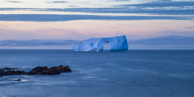 Ice Arch - Cape Spear