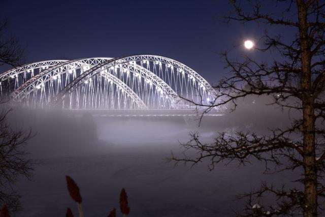 Foggy Winter Bridge