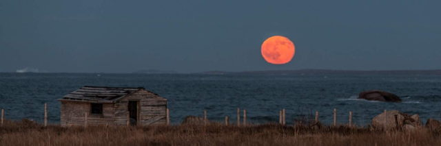 Full Moon Rising - Lumsden