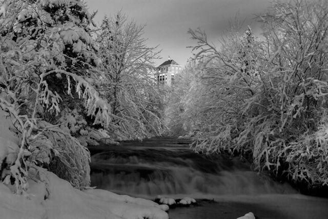 First Snow - St. John's