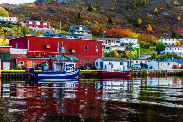 Boats Of Petty Harbour