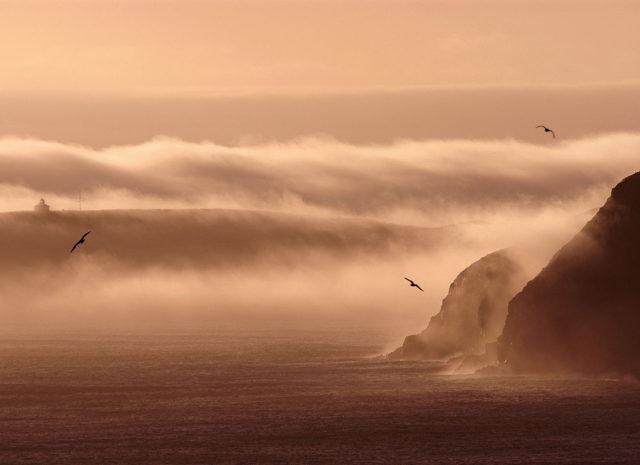 Cape Spear Dawn, Newfoundland