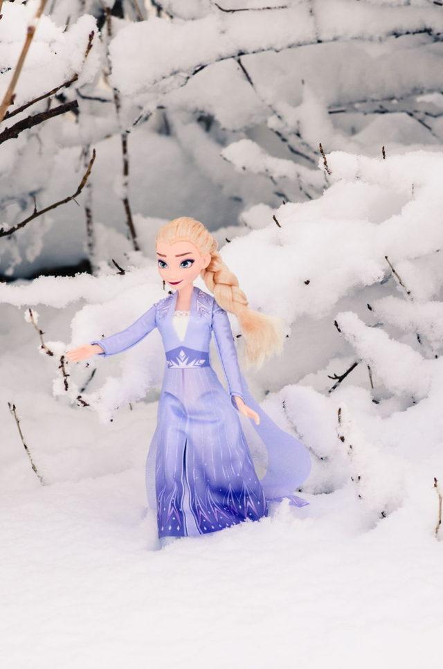 Elsa in Newfoundland