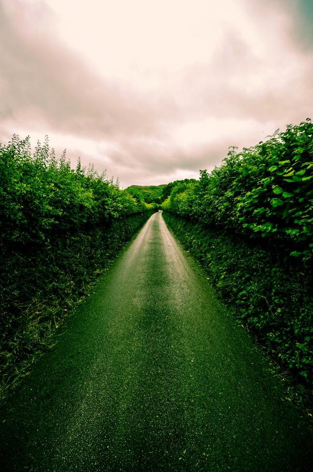 Green Lane, Wales