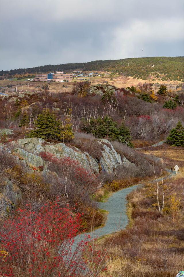 Autumn trail near geocenter