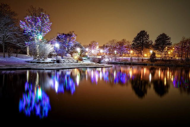 Bowring Park Winter Wonderland