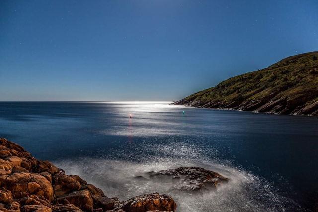 Ocean Moonlight - Petty Harbour