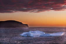 Torbay Sunrise