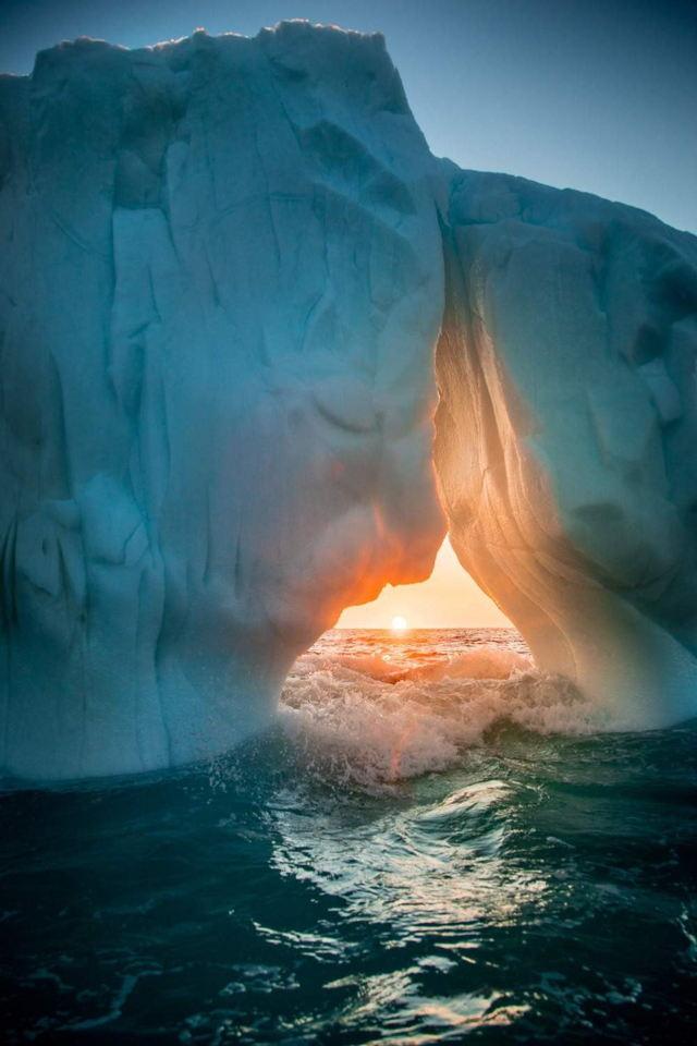 Lady Iceberg