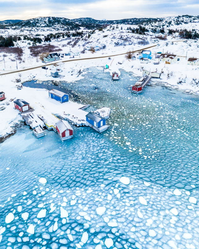 Sea Ice in the Cove, Twillingate