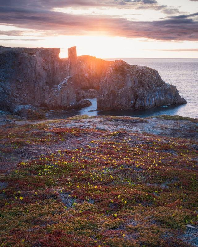 Sunlight Spillars Cove