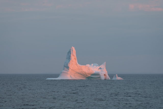 Iceberg at Sunrise Bonavista