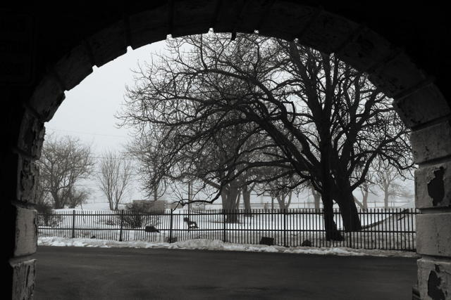 Foggy Day Through An Archway