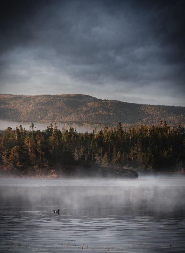 On a grey foggy day