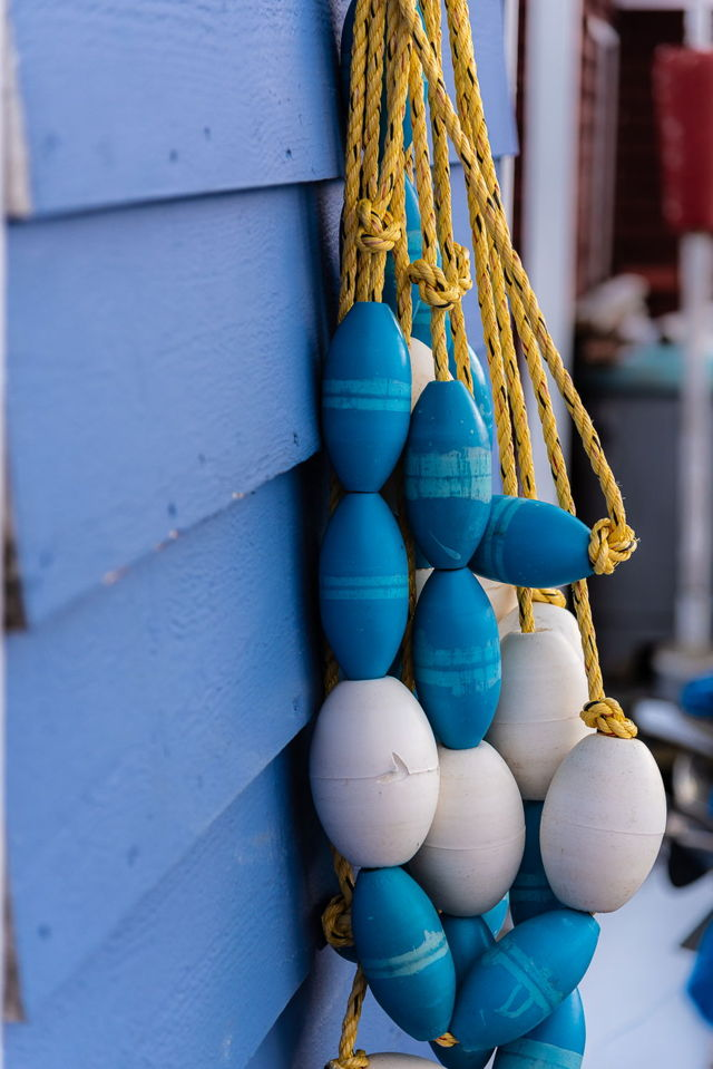 Blue Net Floats