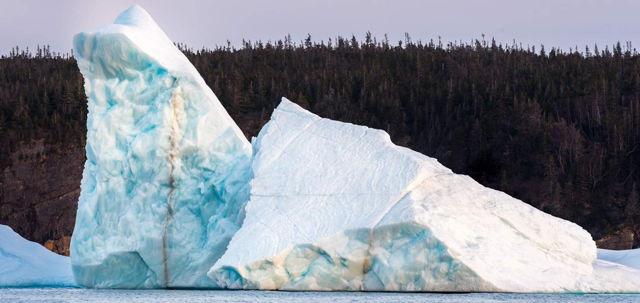 Bay Bulls Iceberg