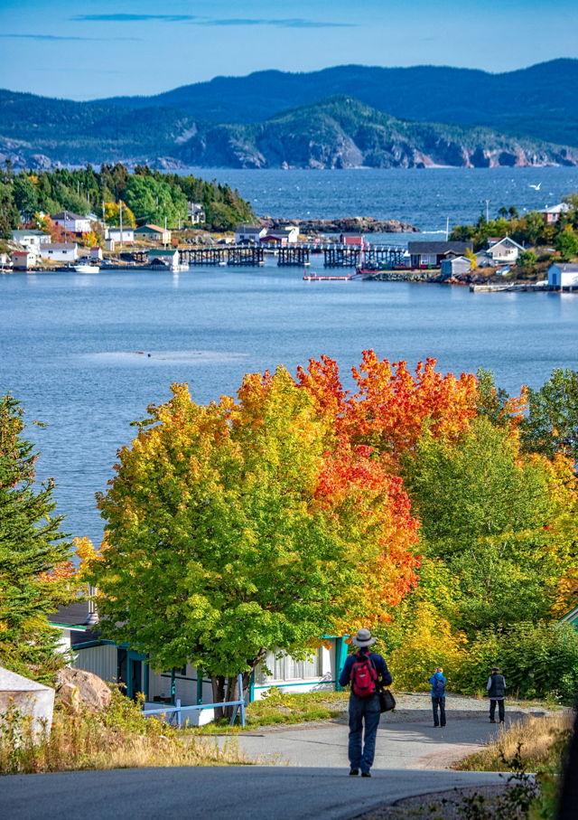 Fall in Little Bay Islands, Green Bay, Newfoundland