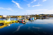 Bonavista Harbour