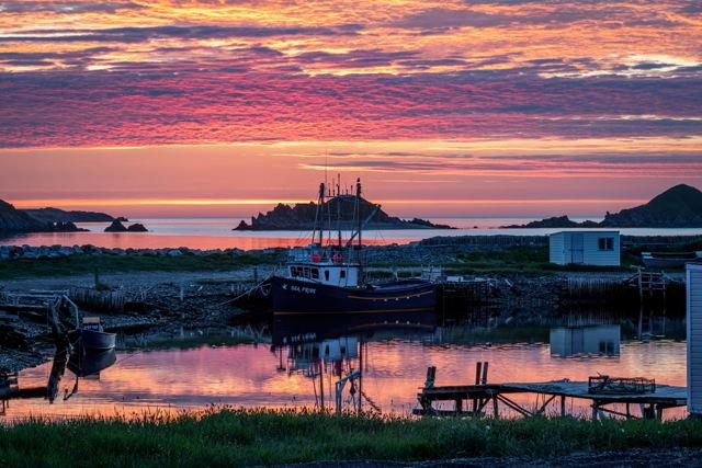 Ferryland Sunrise