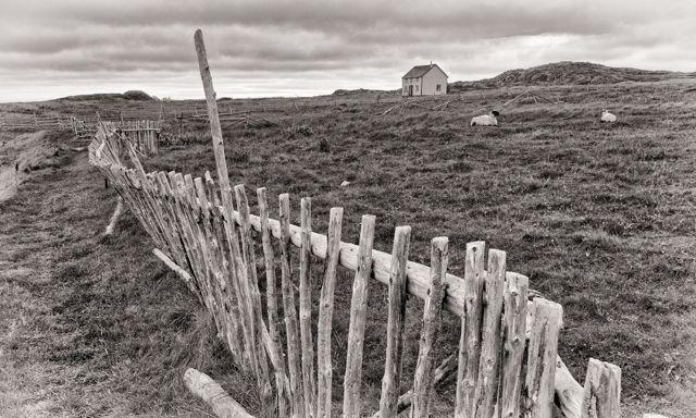 Not a Sound, Tilting, Newfoundland