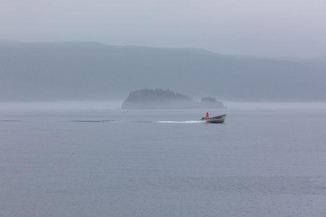Fisherman in Hickman's Harbour