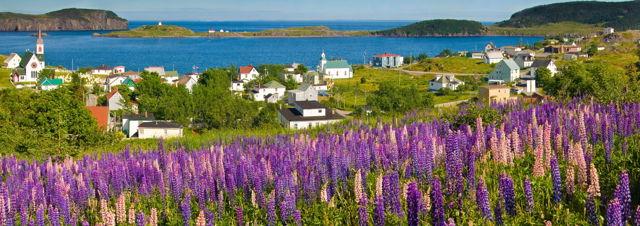 Trinity Summer, Newfoundland
