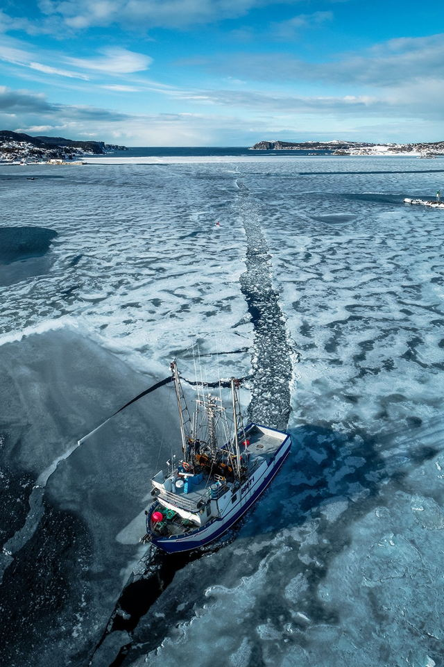 Frozen Pathways