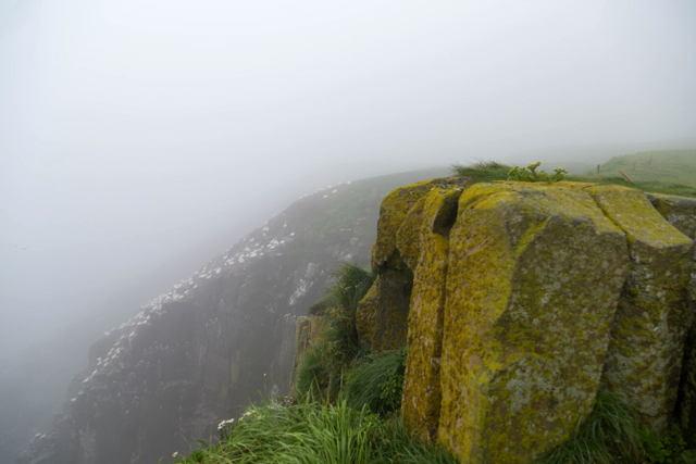 Grey foggy day  at Cape St Marys 1
