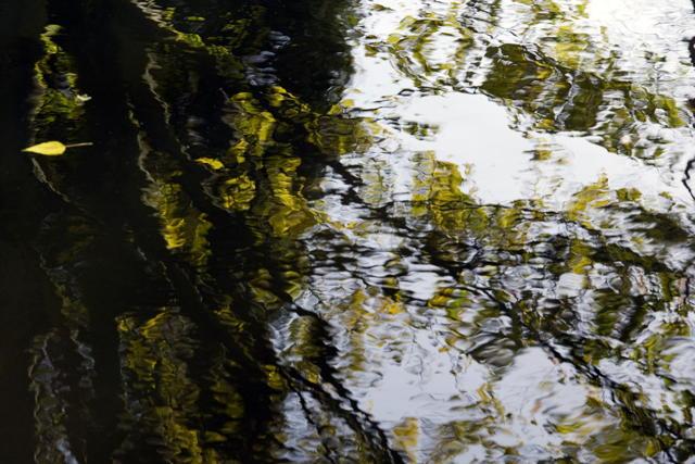 River Stories III