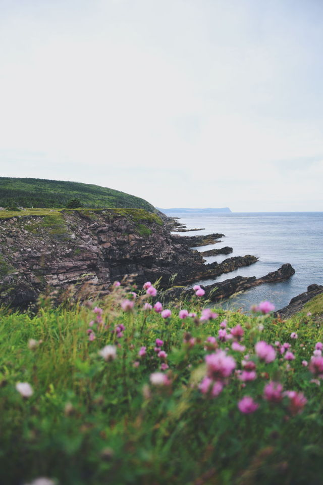 Cape Spear-Blackhead