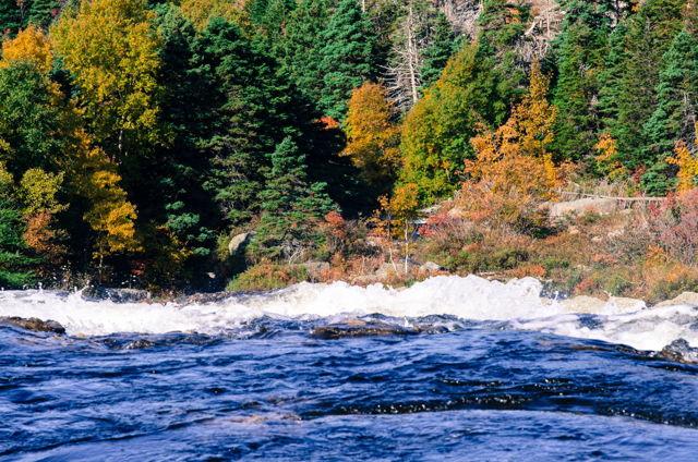 Fall at Manuel's River