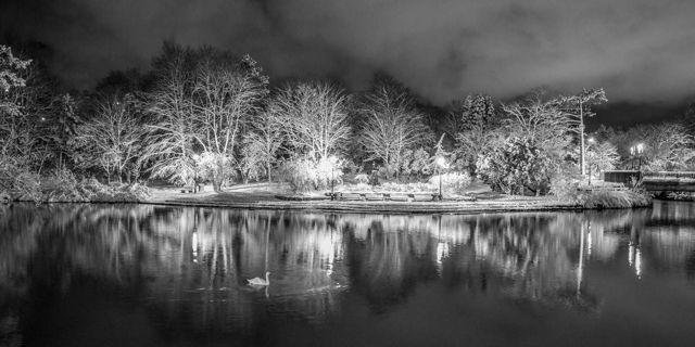 Bowring Park Winter - St. John's