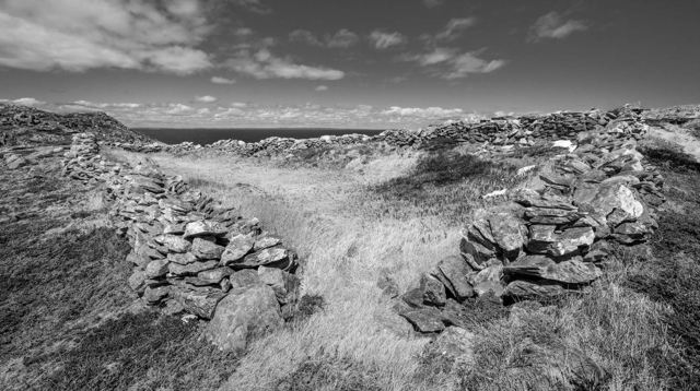 Grates Cove Wall